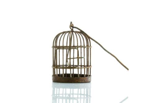 B0185-2-jaula-sin-pájaro